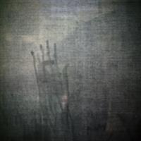 "Rachel Girard Reisert, ""Hand,"" 2007"