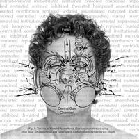 Deborah Orloff - Toxicity of General Anesthesia, 2001