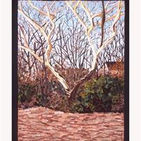 "Georgie Cline, ""Whole: XIII Scioto River Antler Tree"""