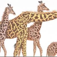 "Ruth Heller - ""Giraffes"", Many Luscious Lollipops, 1988"