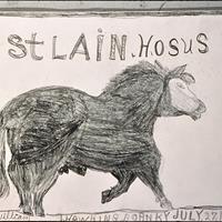William Hawkins - St. Lain Hosus