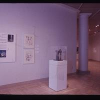 """From the exhibition """"Art for the Public: New Collaborations"""""""