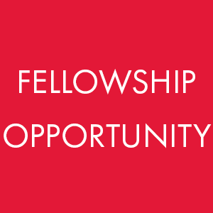 Ohio Arts Council fellowship opportunity